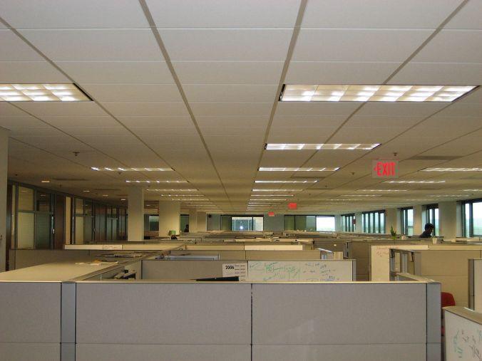cubicle PD.jpg